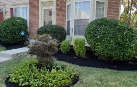 Brick Home Landscaping