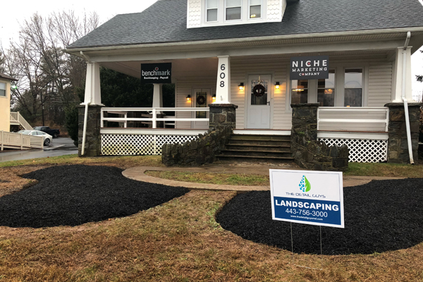 Niche Marketin Company Landscaping for Office Building