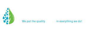 The Detail Guys logo