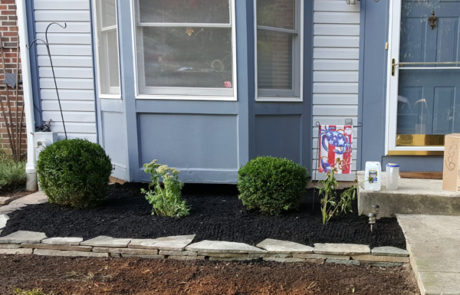 blue house landcaping front