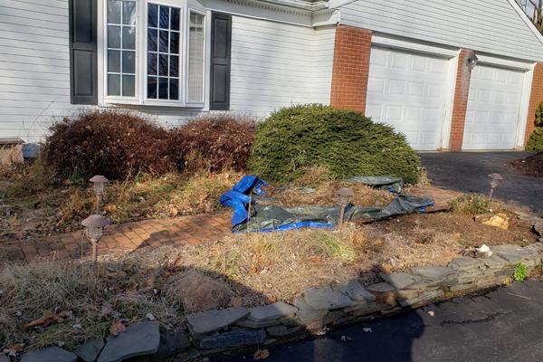 landscaping weeds