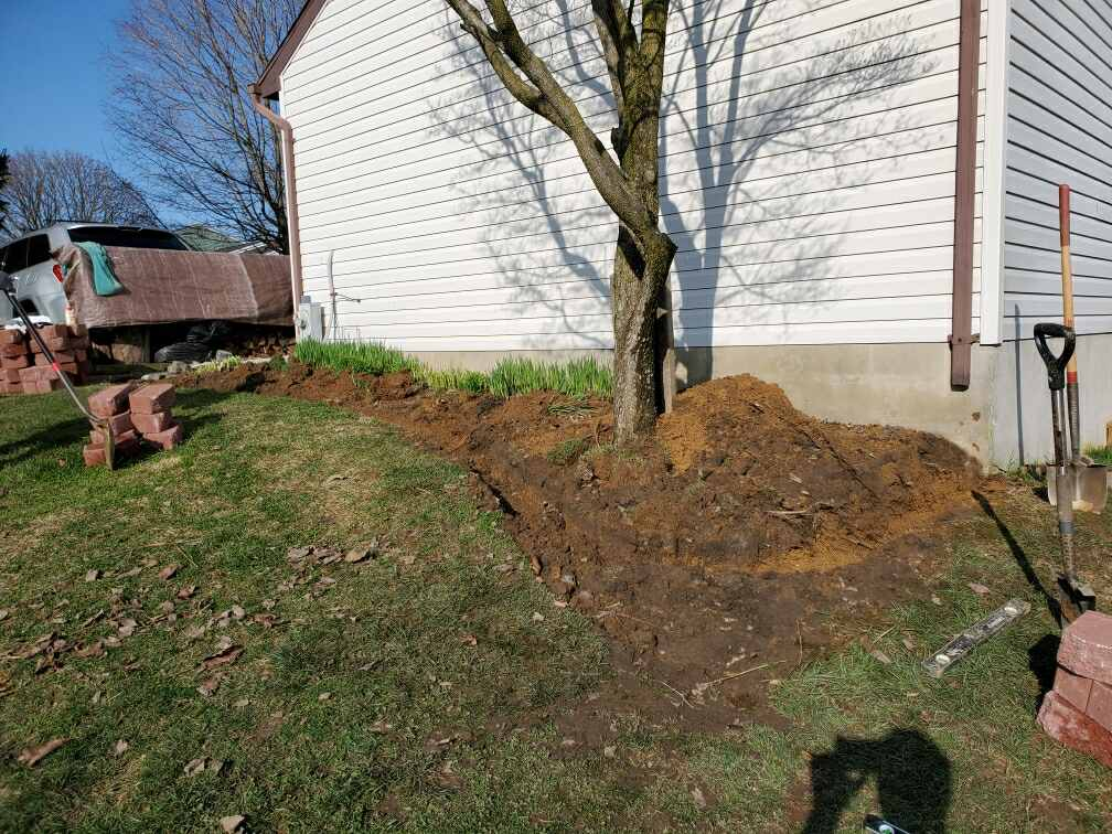landscaping progress picture