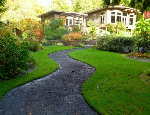 Best Edgewood Landscaping Design Ideas