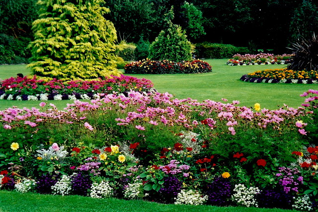 Landscaping in Bel Air, MD
